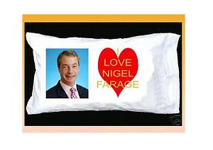 Nigel Farage pillow case