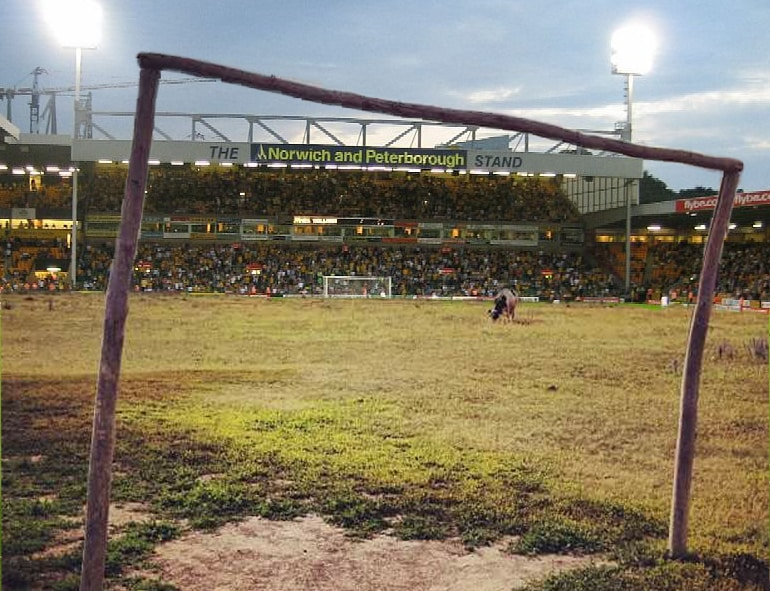 Norwich City FC pitch