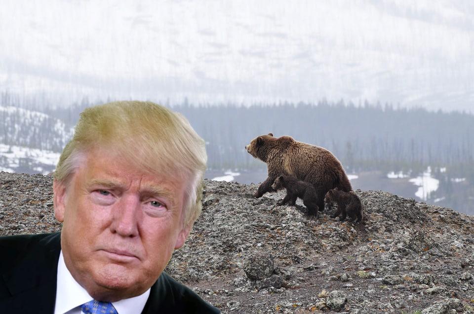 Donald Trump Alaska