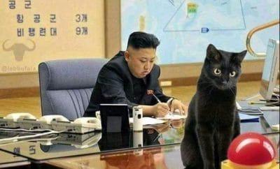 Kim Jong un cat button