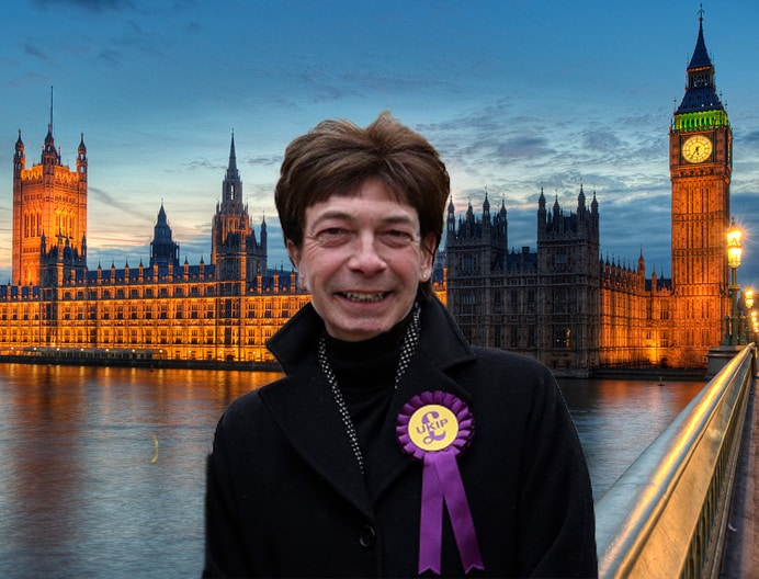 Diane James UKIP leader