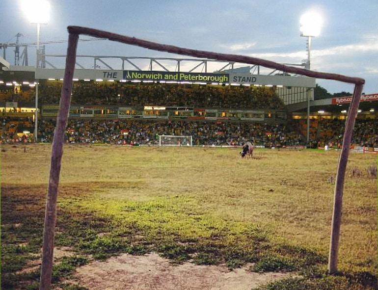 Norwich City FC pitch