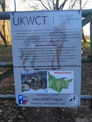 Wolf sign in Suffolk