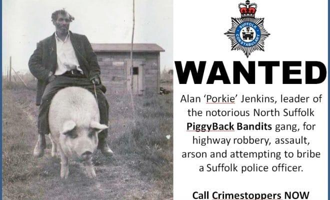 PiggyBack Bandits